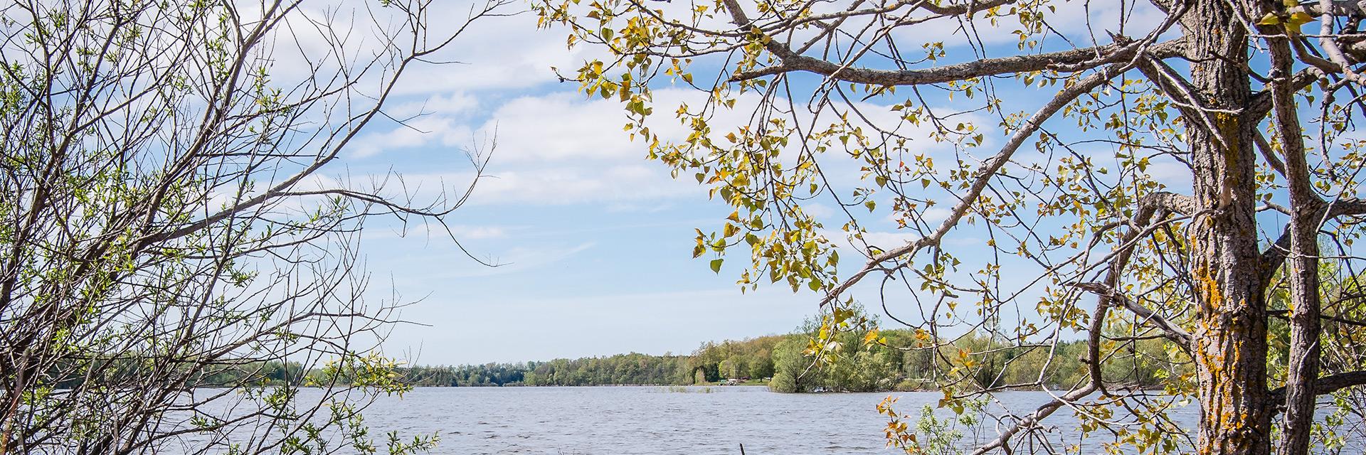 Guelph Lake