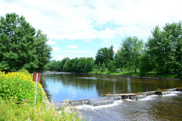 Embracing Canadian Summer in Guelph & Wellington County