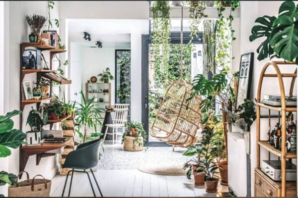 Make Your Home More Appealing by Staging Plants
